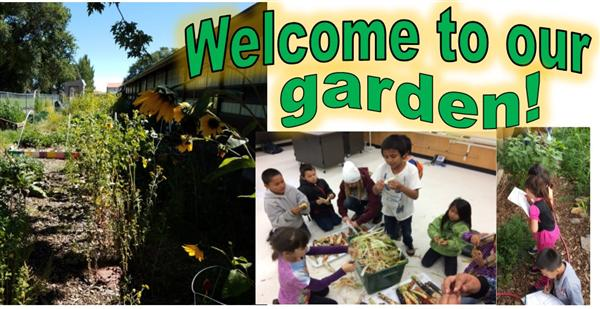 Killip STEM / Garden Club