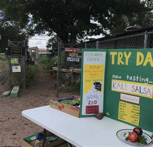 View of a Try Day table for Kale Salsa set up by the garden