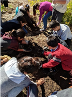 students helping plant in the garden