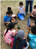 students observing plants