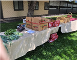 Friday Produce Pick Up table of food for families