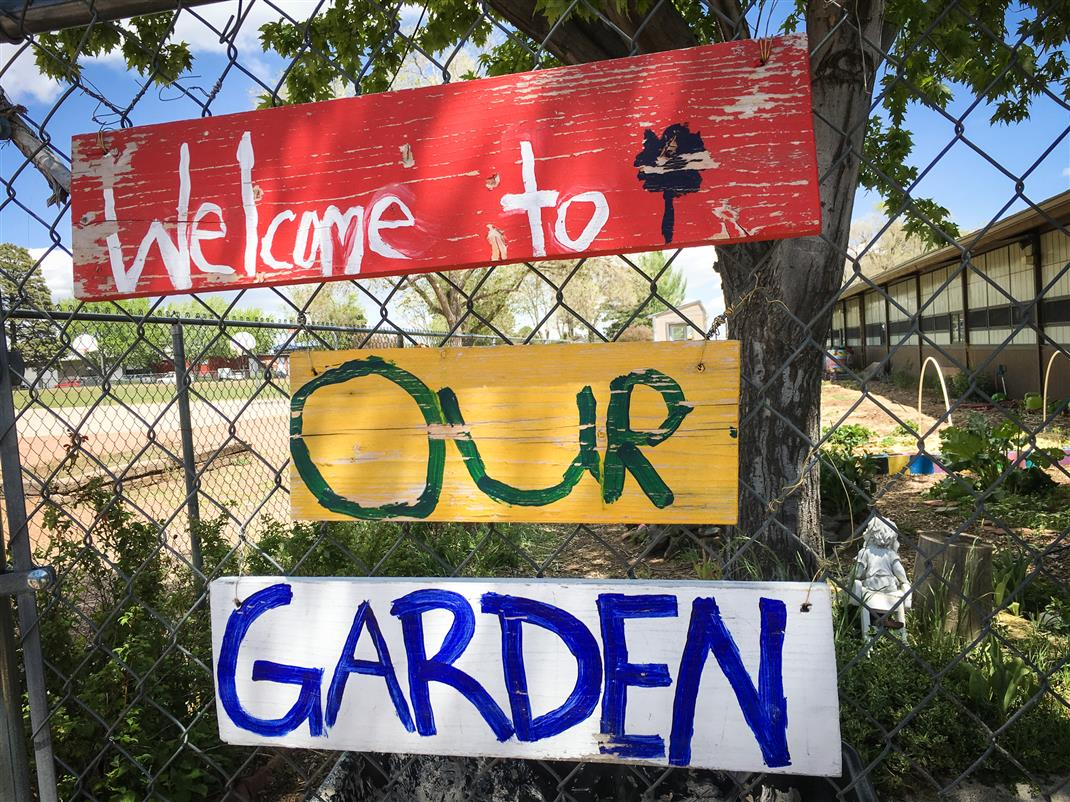 The Killip Garden allows for hands-on learning and provides food for the Killip community.