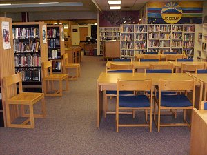 Library Pic